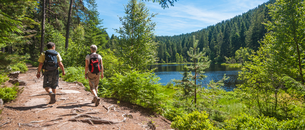 Wandern im Schwarzwald am See