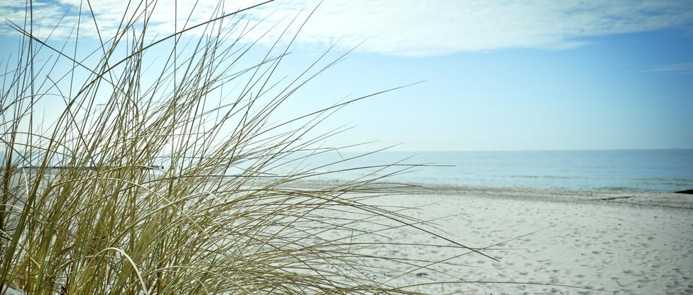 Dünen und Sand an der Ostsee