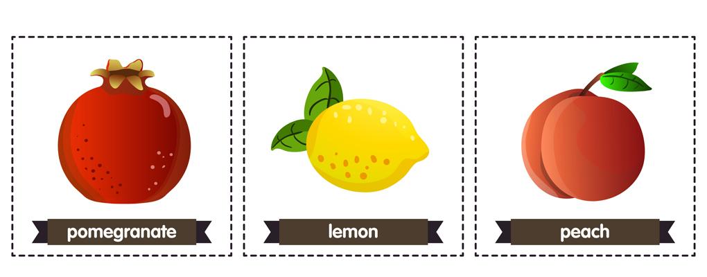 Kärtchen mit Früchten und die dazugehörige Übersetzung